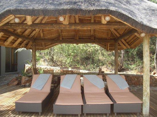 Etali Safari Lodge: Sun loungers