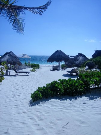 Acamaya Reef : beach