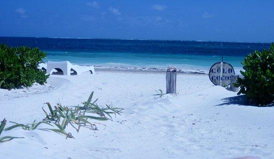 Acamaya Reef : the beach