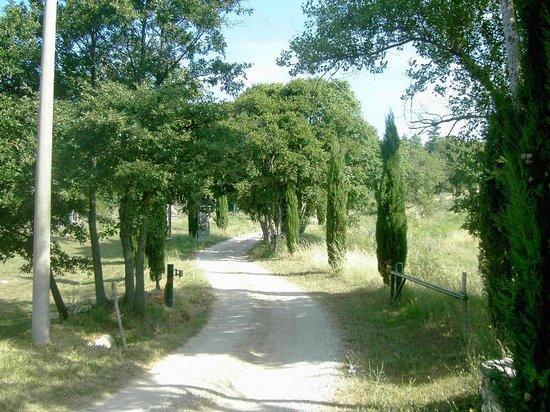 La Contea Degli Angeli: Strada di accesso