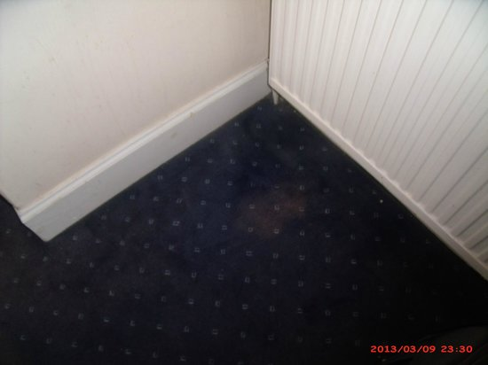 Victorian House: more  staines on carpet