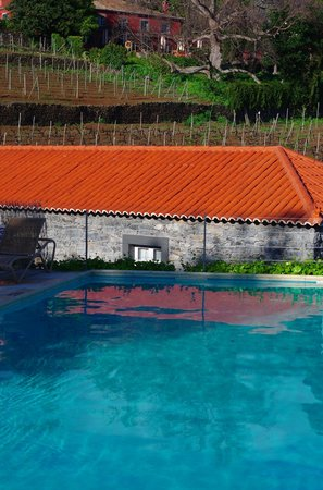 Estreito da Calheta, Portugal: Cottage pool
