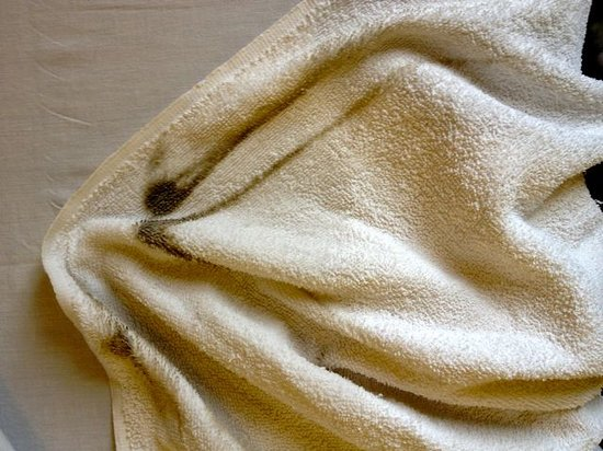 Parkside Hotel: Towel after wiping moldy shower walls, Room 206