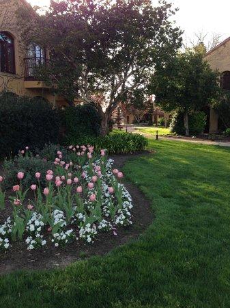 Vintners Inn: Flowers bordering buildings