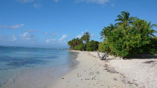 Le Rotabas: plage