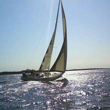 Poet's Lounge Sailing Charter -  Day Tours: POET'S LOUNGE SAILING CHARTER / CLASSIC ERICSON 39'