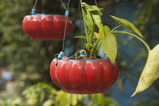 Lutyens Bungalow: Colourful glazed planters for sale in the garden