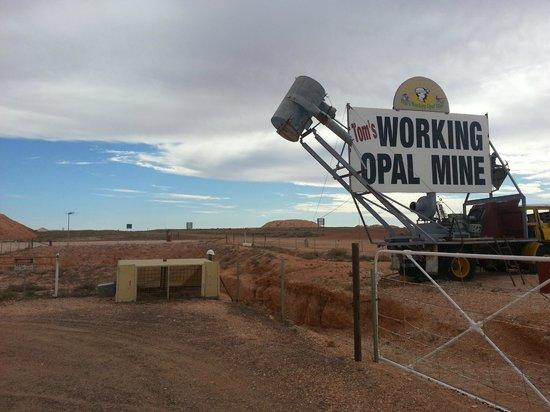 Tom's Working Opal Mine : Mining Outside