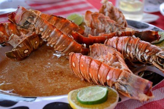 "Hostal ""El Villareno"": Delicious lobster for dinner"