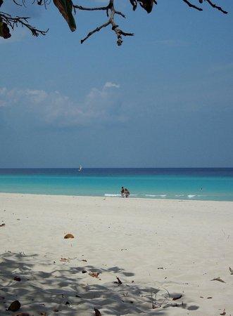 """Hostal """"El Villareno"""": Beautiful beach"""