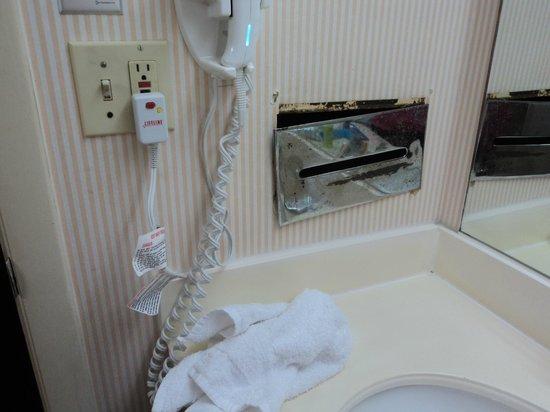 Quality Inn: Rusty Bathroom Fixture