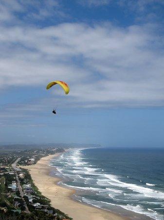 Cloudbase Paragliding: Cloudbase Tandem flying high over Wilderness