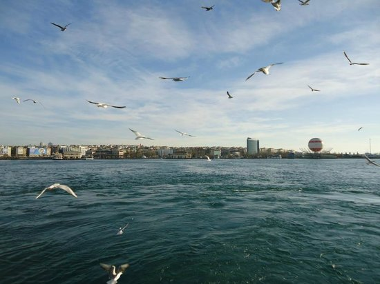 DoubleTree by Hilton Istanbul - Moda: The hotelview  from the sea