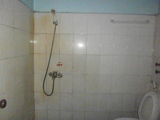 Advisor Angkor Villa: rusty shower