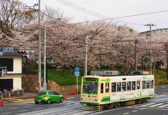 Kita, Japan: 飛鳥山公園と都電