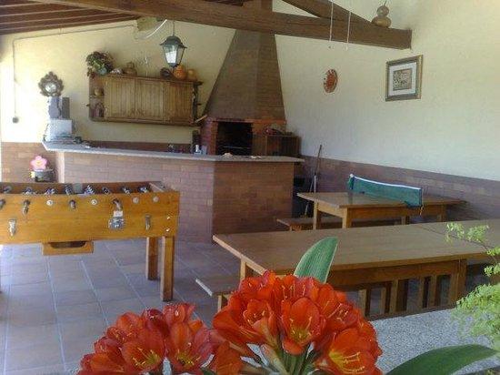 Quinta Dom Jose: barbecue area