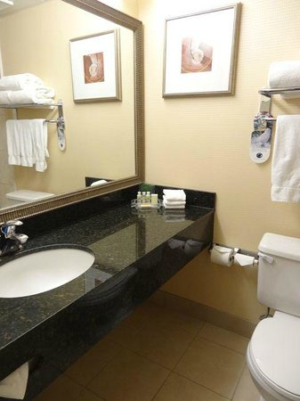 Holiday Inn Toronto Airport East: bathroom