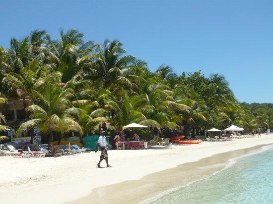Henry Morgan Beach Resort: Roatan