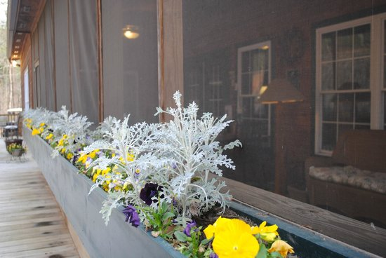Long Mountain Lodge: Front porch spring flowers