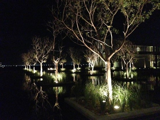 NIZUC Resort and Spa : Night view of grounds