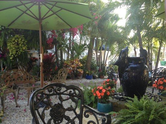 The Duval Inn: Back Garden