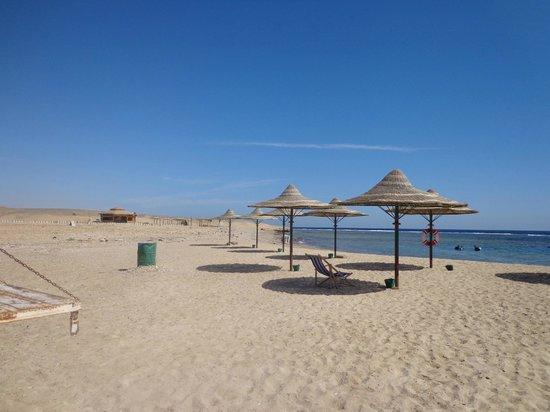 Flamenco Beach and Resort: soiaggia