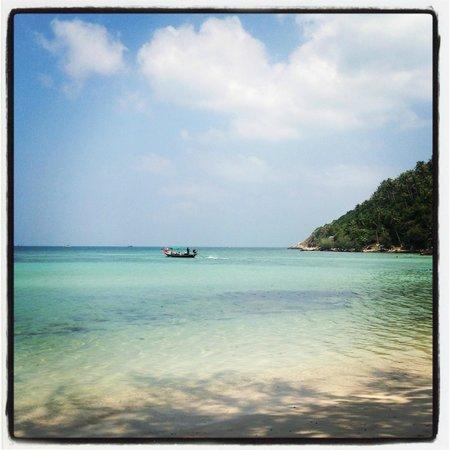 Salad Beach: paradise
