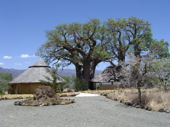 Ol Mesera Tented Camp: entrance of ol mesera