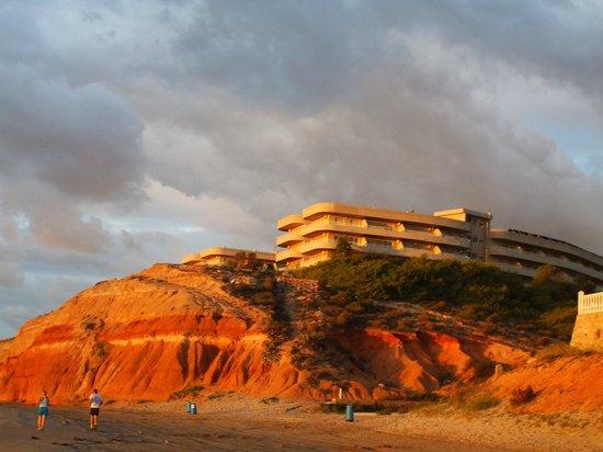 Palmera Beach Apartments: Vista de los apartamentos desde la playa