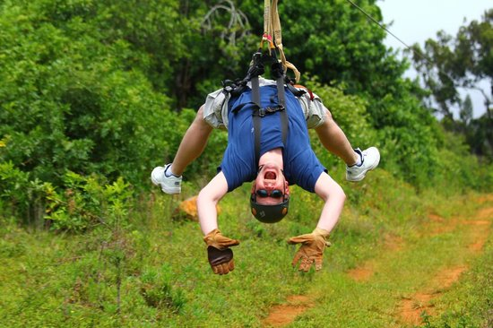Northshore Zipline Co.: Crazy Dad