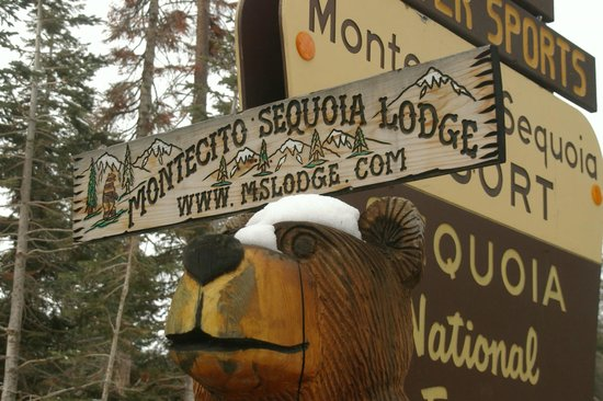 Montecito Sequoia Lodge: Sequoia sign