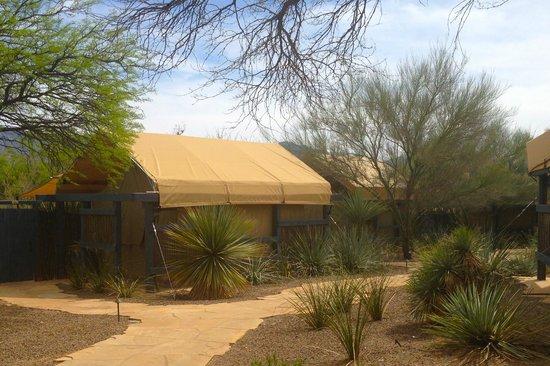 Miraval Arizona Resort & Spa: The Outdoor Spa Area