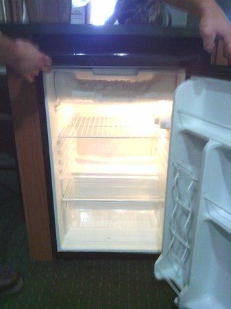 ميكروتل إن آند سويتس باي ويندام بوشنيل: Freezer Roaches