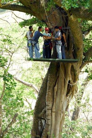 Hotel Borinquen Mountain Resort: Canopy tour