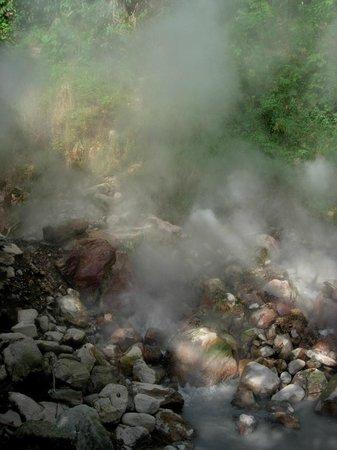 Hotel Borinquen Mountain Resort: volcanic mug