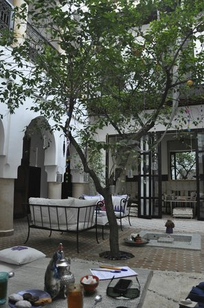Dar Charkia: More tree