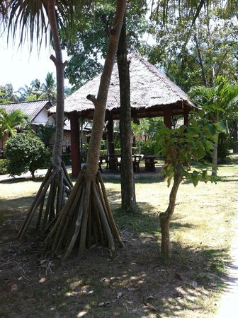 Oasis Yoga Bungalows: the grounds
