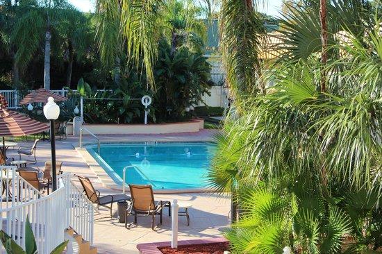 Quality Inn & Suites: Vista dalla camera