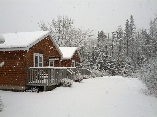 Anchorage House & Cottages: Fresh snowfall