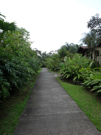 Casa Luna Hotel & Spa : Walking to the room