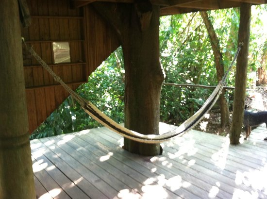 Martz Farm Treehouses and Cabanas Ltd.: treehouse hammock 2