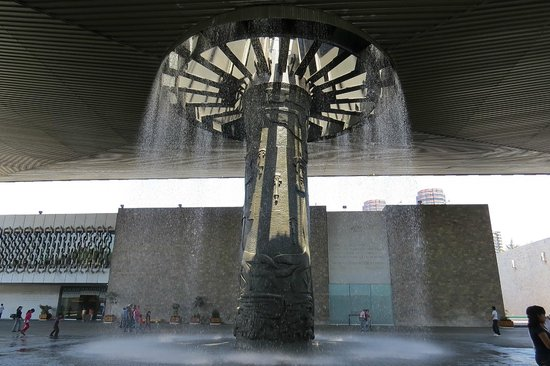 Interior del museo picture of national museum of - Arboles de interior ...