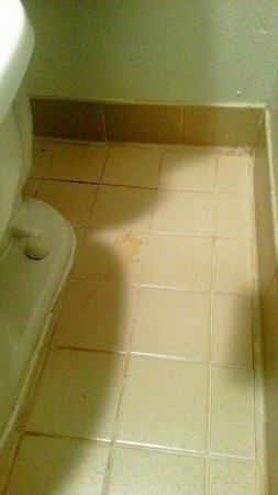 Extended Stay America - Dallas - Las Colinas - Green Park Dr.: Toilet, pee stain
