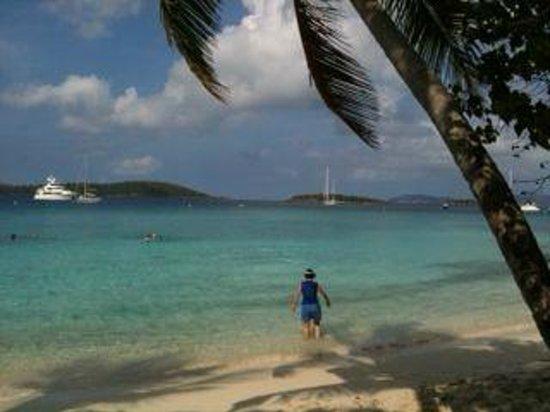 Salomon Beach St John Usvi Picture