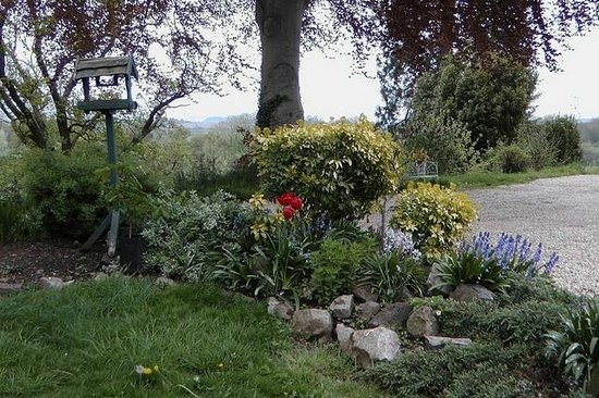 The Exe Valley Bed and Breakfast : Our garden has views over the Exe Valley