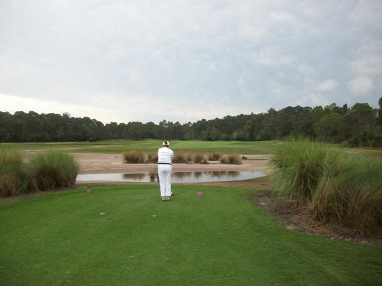 Disney's Osprey Ridge Golf Course : View from one of the tee boxes