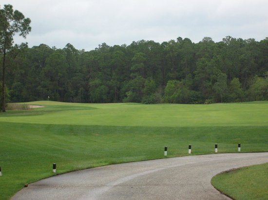 Disney's Osprey Ridge Golf Course : Just a pretty golf course.