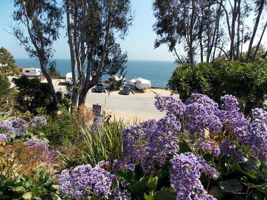 Malibu RV Park