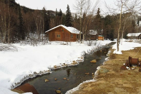 Chena Hot Springs Resort: cabins