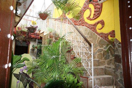 Hostal Remanso de Paz: Sala
